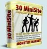 Thumbnail 30 MiniSiteTemplates