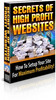 Thumbnail Secrets of High Profit Websites