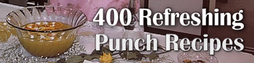 Product picture 400 punch recipes