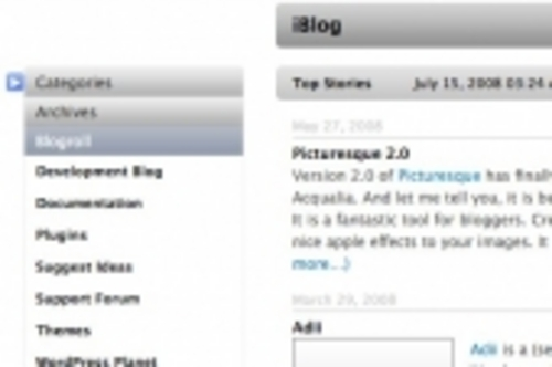Product picture Hide Items In The Wordpress Sidebar (with PLR)